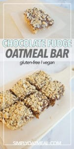 No bake chocolate peanut butter fudge oatmeal bar topped with crunchy peanuts