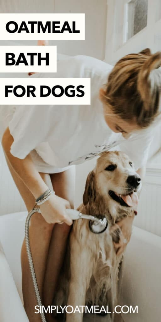 oatmeal bath for dogs